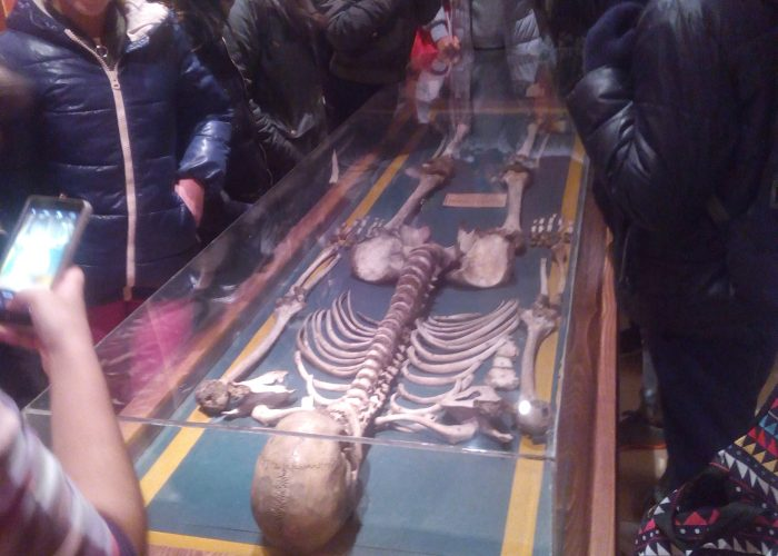 sala de los origenes museo antroplogico